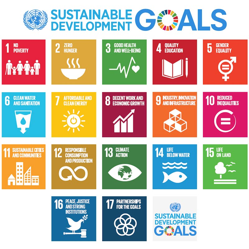 Sustainable_Development_Goals-4_0